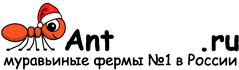 Муравьиные фермы AntFarms.ru - Иваново
